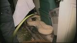 Photos: 100-pound python found in Miami shed - (4/11)