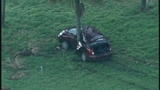 Photos: Car crashes into tree on I-4 - (1/6)