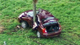 Photos: Car crashes into tree on I-4 - (6/6)