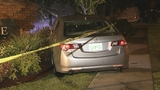 Photos: Man crashes car into subdivision sign - (2/8)