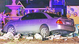 Photos: Car crashes into lawn ornaments - (7/7)