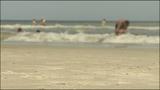 Photos: Shark bites teen on shoulder in Ormond Beach - (7/11)
