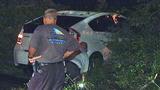 Photos: Man crashes into oak tree limb - (6/7)