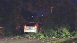 Photos: Man crashes into oak tree limb - (5/7)