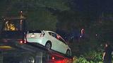 Photos: Man crashes into oak tree limb - (3/7)