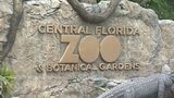 Photos: Animals at the Central Florida Zoo - (2/12)