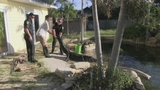 Photos: Real-estate agent finds gator in pool - (4/11)