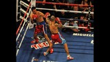 Photos: Cotto vs. Rodriguez fight at Amway - (2/12)