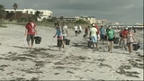 NASA workers clean up Cocoa Beach - (6/7)