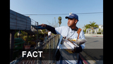 FACT or FICTION: The services affected amid… - (3/23)