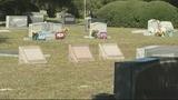 Photos: Lone Oak Cemetery in Leesburg - (2/12)