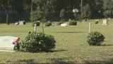 Photos: Lone Oak Cemetery in Leesburg - (3/12)