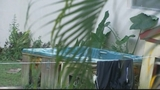 Photos: Alligator found in hot tub - (8/8)