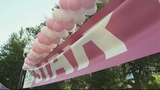 Photos: Making Strides Against Breast Cancer Walk - (8/11)