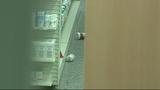Photos: Pharmacy burglar falls through… - (10/10)