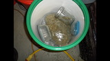 Photos: 120 pounds of marijuana confiscated… - (4/6)