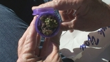 Photos: Greg Warmoth buys pot in California - (3/12)