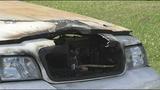 Photos: Arson suspected in cop car fires - (3/9)