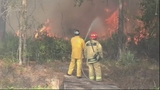 Photos: Brush fire threatens homes along I-95 - (19/20)