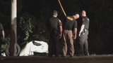 Photos: DUI suspect crashes into pond - (3/7)