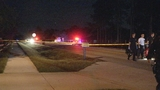 Photos: Body found during home invasion - (1/15)