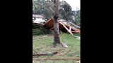 Photos: Tornado damage in Palm Coast - (9/19)