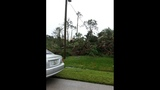 Photos: Tornado damage in Palm Coast - (7/19)