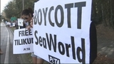 Photos: Protest outside SeaWorld - (4/9)