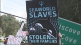 Photos: Protest outside SeaWorld - (3/9)