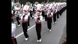 Florida Citrus Parade in Downtown Orlando - (4/25)