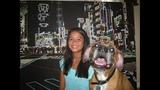 Photos: Family wants pet dog Edgar returned - (2/25)