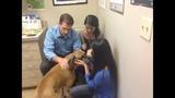 Photos: Family wants pet dog Edgar returned - (24/25)