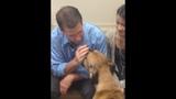 Photos: Family wants pet dog Edgar returned - (3/25)