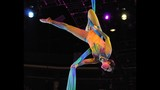 Ringling Bros. Presents Legends at Amway Center - (12/25)