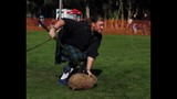 37th Annual Central Florida Scottish Highland Games - (21/25)