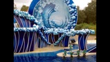 Wild Days at SeaWorld Orlando - (3/13)