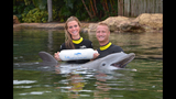 Tampa Bay Rays pitcher proposes at Discovery Cove - (4/4)