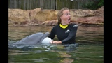 Tampa Bay Rays pitcher proposes at Discovery Cove - (3/4)