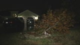 Photos: Severe weather and damage - (1/10)
