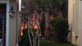Photos: Avalon Park brush fire - (3/9)