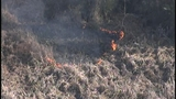 Photos: Avalon Park brush fire - (2/9)