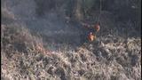 Photos: Avalon Park brush fire - (2/9)