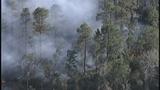 Photos: Avalon Park brush fire - (8/9)