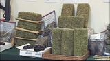 Photos: Drug parcels discovered in Marion - (2/11)