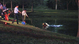 Photo: Woman crashes car into pond - (6/9)