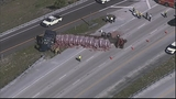 Photos: Truck with mulch overturns, blocking I-4 - (4/11)