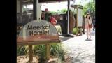 Experience Brevard Zoo - (21/25)