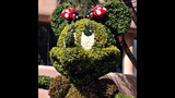 2014 Epcot Flower & Garden Festival Highlights - (16/25)