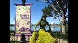 2014 Epcot Flower & Garden Festival Highlights - (18/25)
