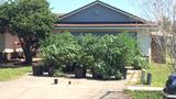 Photos: Orange County grow house busted - (6/8)